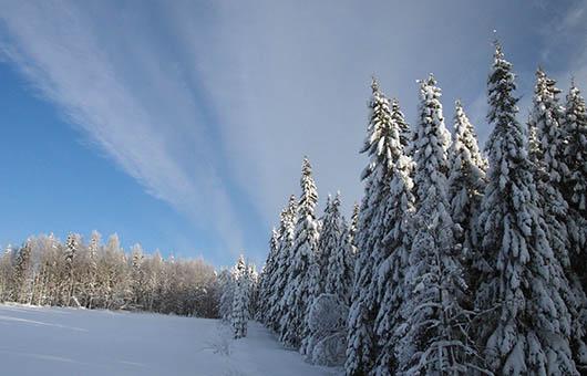 Ilola Inn Sysmä winter vacation